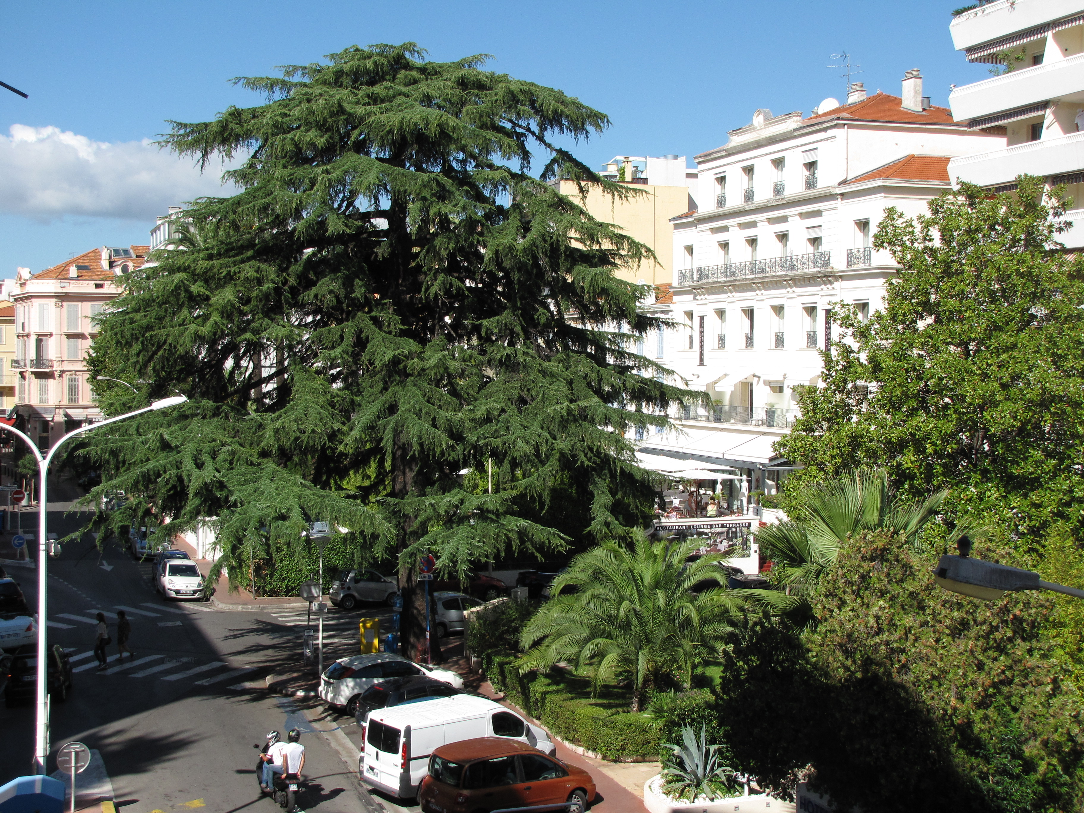 Agence immobili re cannes vente achat appartement for Achat maison cannes